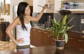 Hoe kan ik ontdoen van huisstofmijten met een natuurproduct van mijn huis?