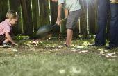 Hoe te begraven van een hond