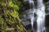 Wat zijn de 5 emergente eigenschappen van Water?