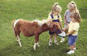 Boerderij dieren partij levensmiddelen voor kinderen