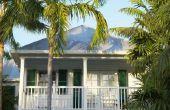 How to Cure ziek palmbomen