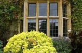 De beste tinten voor grote ramen