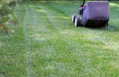 Apparatuur voor snijden gras