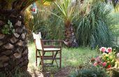 Creëren van een tropische tuin