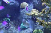 Kleine rode wormen in een zoetwater Aquarium