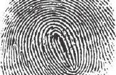 Hoe vindt u ideeën voor een Project van de wetenschap-eerlijke vingerafdrukken