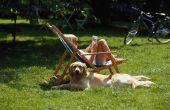 Hond-resistente Turf
