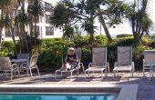 Tropische planten & bomen voor Texas weer om te gaan rond een zwembad