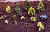 Hoe moet ik de bodem van mijn tuin bemesten voor het planten?