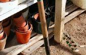 Wat Is het verschil tussen Compost & potgrond?
