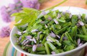 Kruiden voor een tuin salade