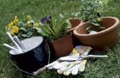 Tuinieren in emmers