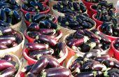 Hoe te kiezen voor een aubergine