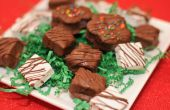 Hoe maak je chocolade Coated Marshmallows