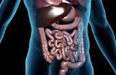Hoe een Candida reinigen en ontdoen van een Candida-infectie