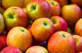 Het gebruik van appel Cider azijn voor energie