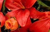 Wat soorten bloemen gaan met lelies?