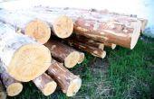 Hoe uw eigen Bevloering van het hardhout snijden van bomen