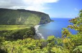 How to Find a Job onderwijs in Hawaï