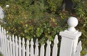 Piket houten hekken grootte & stijlen