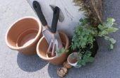 Over het beschermen van Terra Cotta potten voor buitengebruik