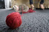 Hoe maak je een bal van garen voor katten