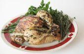 Kan ik een frituren kip in plaats van een roosteren kip gebruiken?