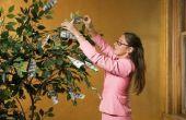 Hoe maak je een Money Tree cadeau voor een douche