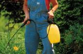 Wanneer moet u gazon meststof neergezet?