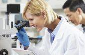 Waarom zijn de R&D kosten geen hoofdletter?