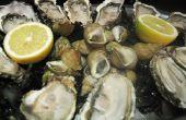 Hoe te bakken van oesters in de Oven