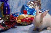 Hoe maak je een konijn uit papier