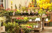 Hoe het schrijven van een ondernemingsplan voor een bloemenwinkel