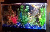 Het instellen van een Aquarium Filter
