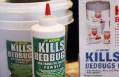 Hoe om te doden een Bed Bug-Nest