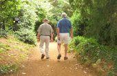 Wat Is een actuaris pensioen?