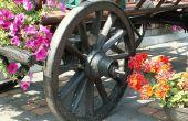How to Make Cinderella vervoer met behulp van draden van de bloem