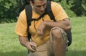 Toepassingen voor Listerine als een Bug Spray