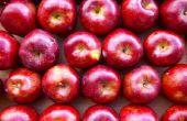 Goedkope zelfgemaakte Apple decoraties voor de keuken