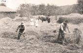 Wat voor soort banen hebben mensen in de jaren 1930?