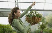 Hoe maak je Plant Hangers