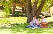 Hoe Plan voedsel bedragen voor een picknick voor 30 personen