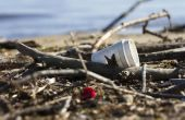 Wat zijn de gevolgen van niet-biologisch afbreekbaar afval?