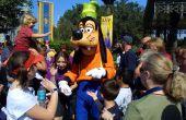 Hoe te uw verjaardag vieren in Walt Disney World