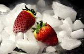 Hoe te verzenden van voedsel in droog ijs
