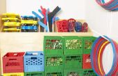 Wat moet de Focus van de basisschool lichamelijke opvoeding programma?