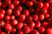 Hoe te bevriezen van hele Cranberry saus