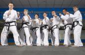 Hoe veel kost het om te openen van een bedrijf van Karate?