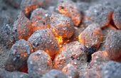 As van Houtskool briketten, kunnen worden gebruikt als meststof?