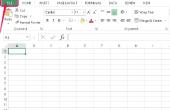 Hoe maak ik een Microsoft Excel-Script?